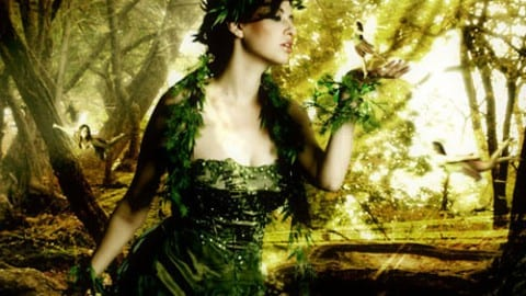 Faerie Facts