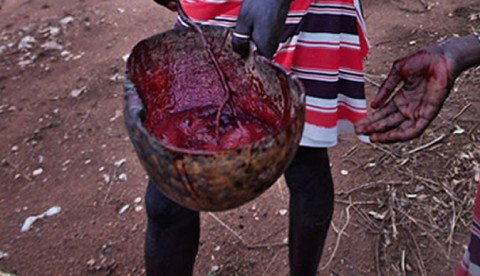 Bulawayo girl (16) confesses to being part of a satanic cult that 'drinks' human blood